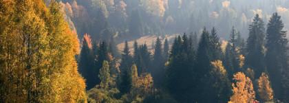 podzimni dovolena na sumave