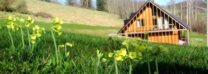 chalupy šumava jaro 2